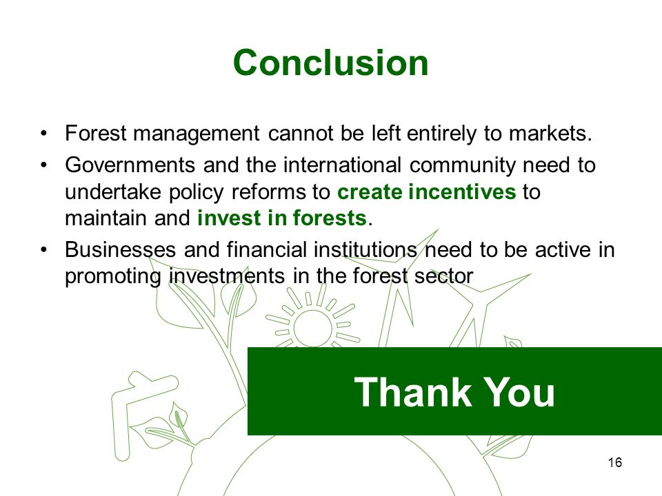 16 Conclusion Forest management cannot be left entirely to markets.