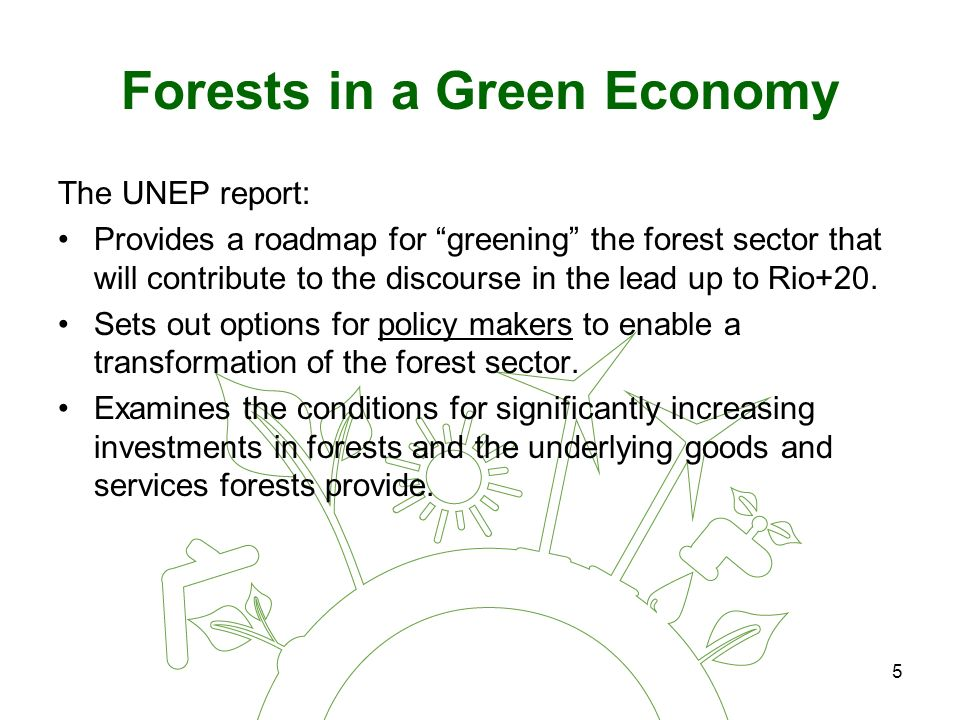 5 Forests in a Green Economy The UNEP report: Provides a roadmap for greening the forest sector that will contribute to the discourse in the lead up to Rio+20.