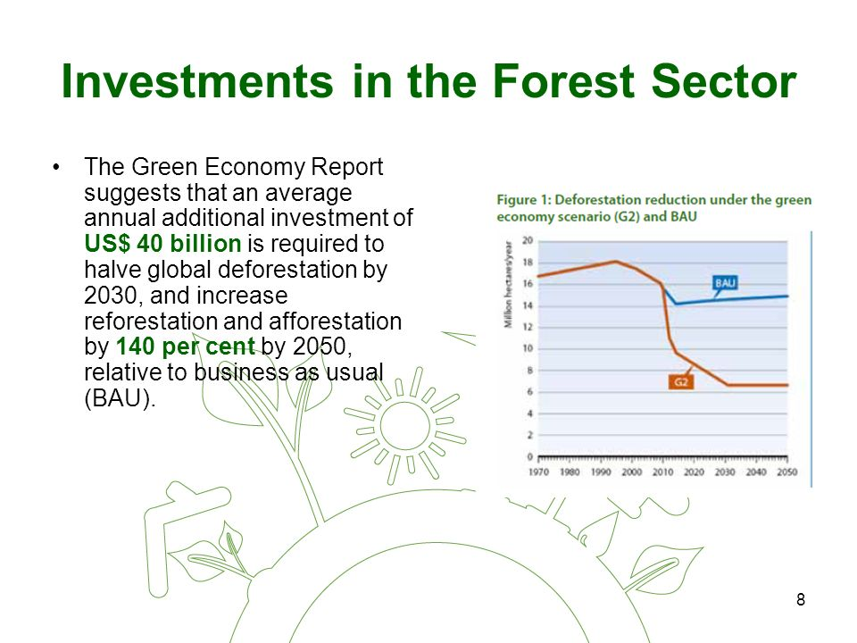 8 Investments in the Forest Sector The Green Economy Report suggests that an average annual additional investment of US$ 40 billion is required to halve global deforestation by 2030, and increase reforestation and afforestation by 140 per cent by 2050, relative to business as usual (BAU).