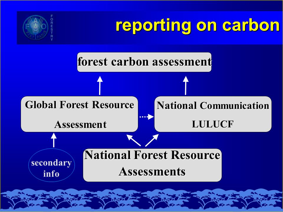 reporting on carbon National Forest Resource Assessments Global Forest Resource Assessment Assessment National Communication LULUCF forest carbon assessment secondary info