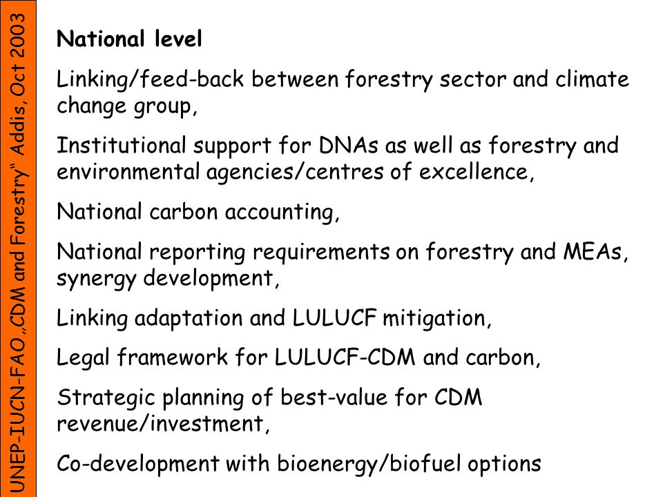 UNEP-IUCN-FAO CDM and Forestry Addis, Oct 2003 National level Linking/feed-back between forestry sector and climate change group, Institutional support for DNAs as well as forestry and environmental agencies/centres of excellence, National carbon accounting, National reporting requirements on forestry and MEAs, synergy development, Linking adaptation and LULUCF mitigation, Legal framework for LULUCF-CDM and carbon, Strategic planning of best-value for CDM revenue/investment, Co-development with bioenergy/biofuel options