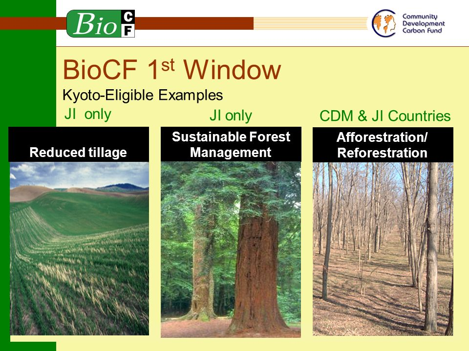 C F Carbon Finance Products of the World Bank BioCF 1 st Window Kyoto-Eligible Examples Afforestration/ Reforestration CDM & JI Countries Sustainable Forest Management JI only Reduced tillage