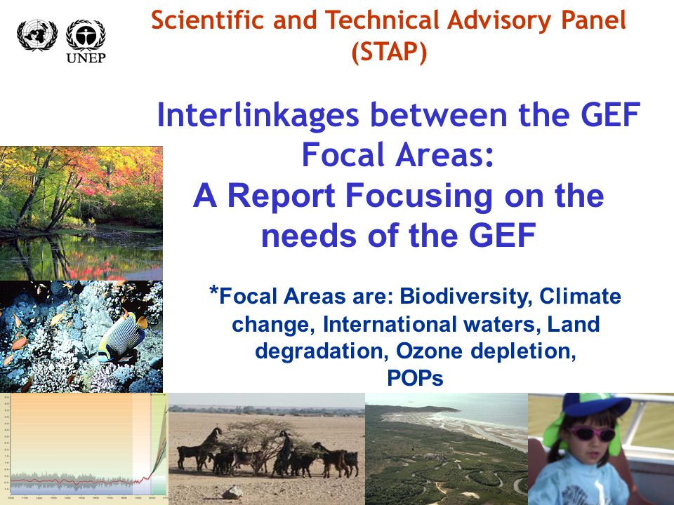 Interlinkages between the GEF Focal Areas: A Report Focusing on the needs of the GEF Scientific and Technical Advisory Panel (STAP) * Focal Areas are: Biodiversity, Climate change, International waters, Land degradation, Ozone depletion, POPs