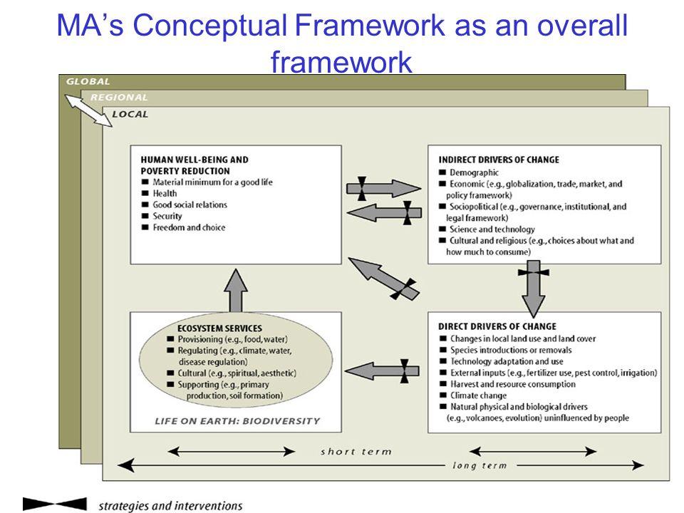 MAs Conceptual Framework as an overall framework