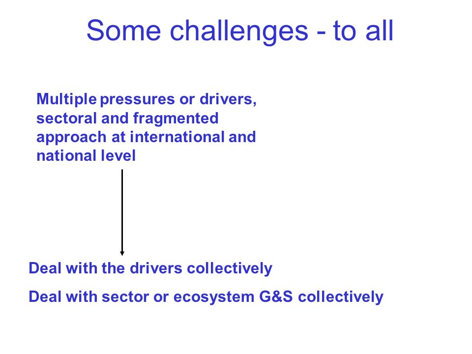 Deal with the drivers collectively Deal with sector or ecosystem G&S collectively Multiple pressures or drivers, sectoral and fragmented approach at international and national level Some challenges - to all