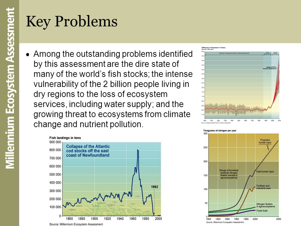 Key Problems Among the outstanding problems identified by this assessment are the dire state of many of the worlds fish stocks; the intense vulnerabil