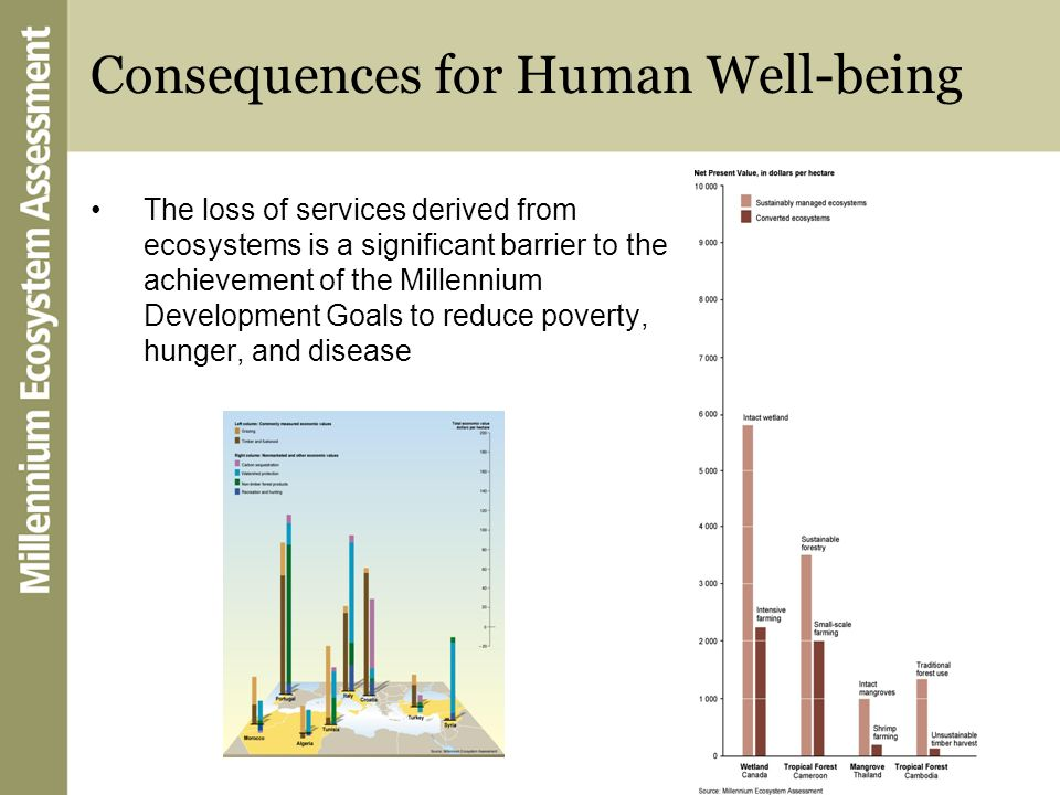 Consequences for Human Well-being The loss of services derived from ecosystems is a significant barrier to the achievement of the Millennium Developme