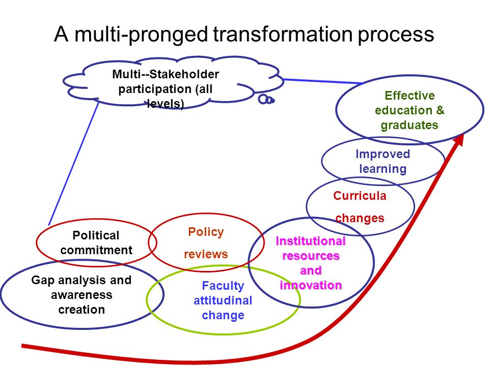 A multi-pronged transformation process Gap analysis and awareness creation Faculty attitudinal change Institutional resources and innovation Policy reviews Political commitment Improved learning Curricula changes Effective education & graduates Multi--Stakeholder participation (all levels)