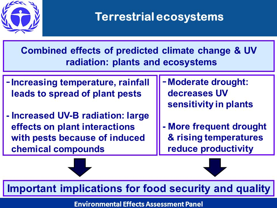 Combined effects of predicted climate change & UV radiation: plants and ecosystems - Increasing temperature, rainfall leads to spread of plant pests -