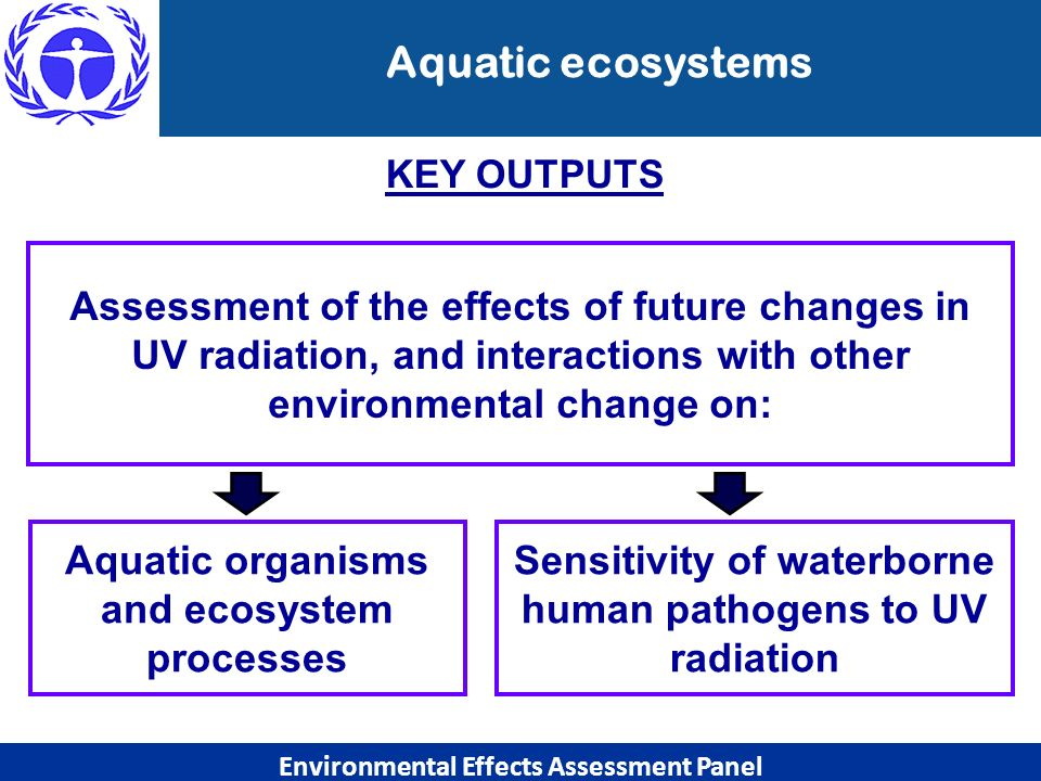 Aquatic ecosystems Environmental Effects Assessment Panel Aquatic organisms and ecosystem processes Assessment of the effects of future changes in UV