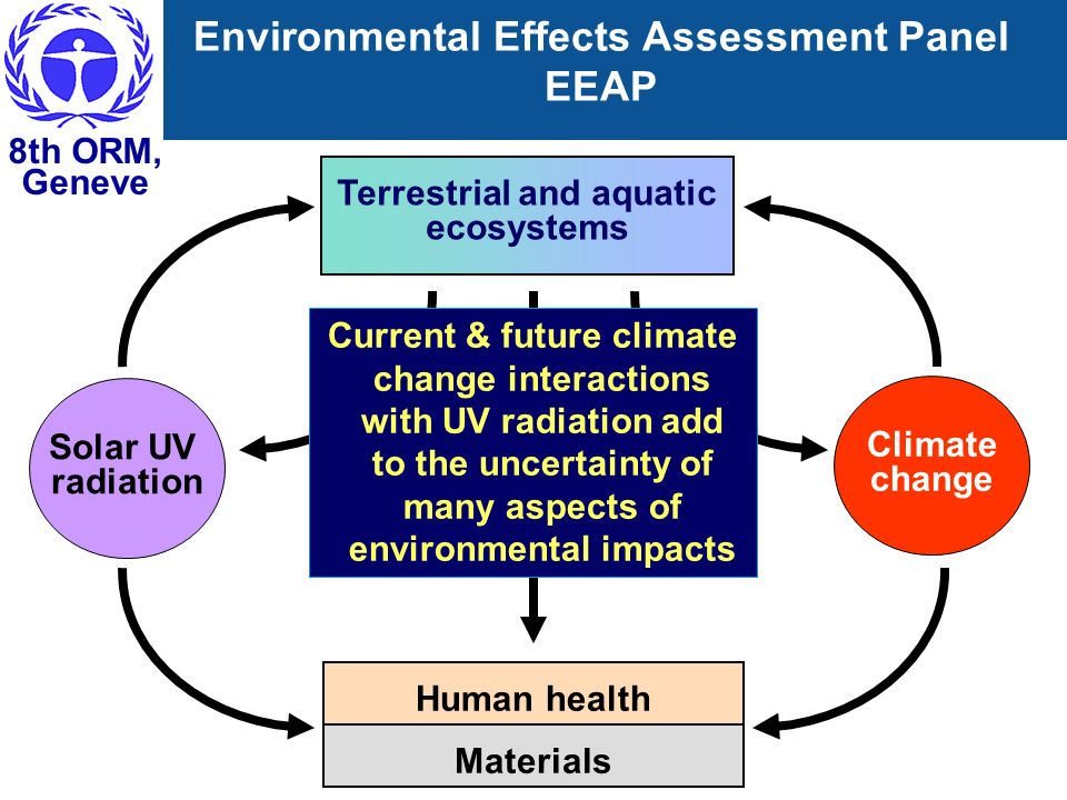 8th ORM, Geneve Environmental Effects Assessment Panel EEAP Solar UV radiation Terrestrial and aquatic ecosystems Human health Materials Climate chang
