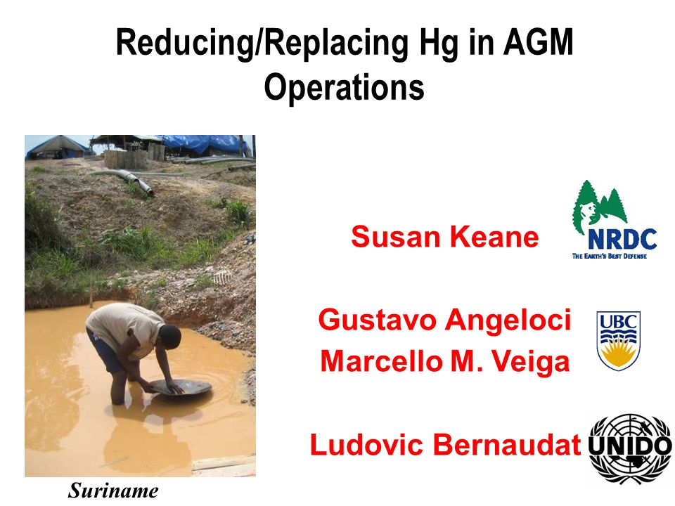 Susan Keane Gustavo Angeloci Marcello M. Veiga Ludovic Bernaudat Reducing/Replacing Hg in AGM Operations Suriname