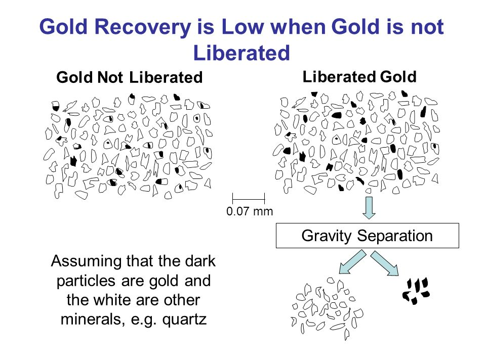Gold Not Liberated Liberated Gold Assuming that the dark particles are gold and the white are other minerals, e.g. quartz 0.07 mm Gold Recovery is Low