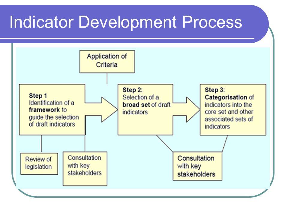 Indicator Development Process