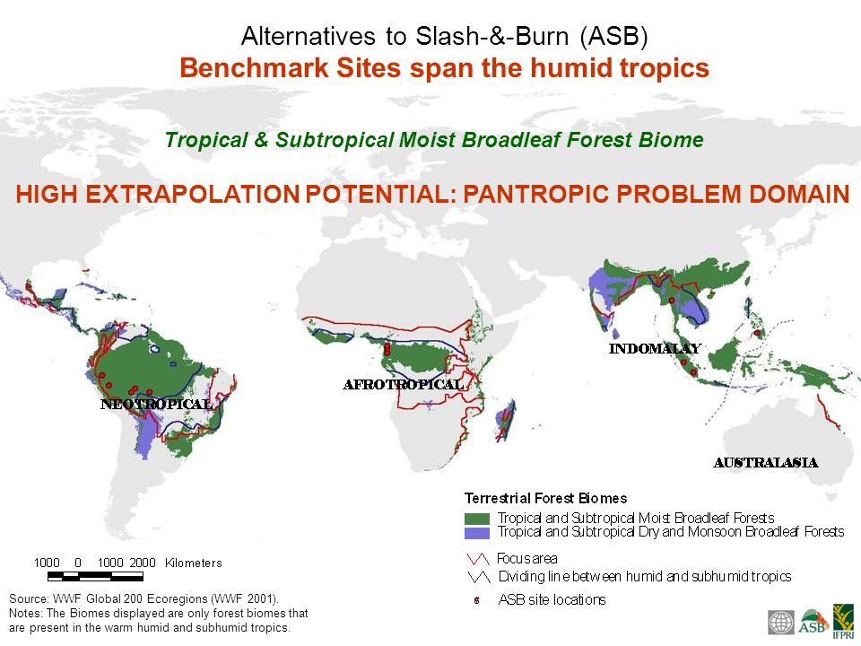 a long-term, distributed network of benchmark sites, started in 1994 a global consortium of over 50 research institutions, NARS, NGOs, government agencies, universities, and community groups; with contributions from about 250 researchers ASB is the only cross-cutting sub- global assessment of the MA and looks at tropical forest margins serious about integrated natural resource management (iNRM) principles: problem focused, driven by user needs, multidisciplinary, integrated approach to natural resource management Works at multiple scales through a nested local, national, regional and global structure Involves multiple knowledge systems: local knowledge, policymakers knowledge, and scientific knowledge Results from the World Bank Meta-Evaluation of the CGIAR: ASB has been applauded … for innovative field research, strong science, and for going furthest within the CGIAR toward implementing effectively a holistic, ecoregional approach founded on in-depth local research linked methodologically across long-term benchmark sites around the world to permit effective scaling up to global level.