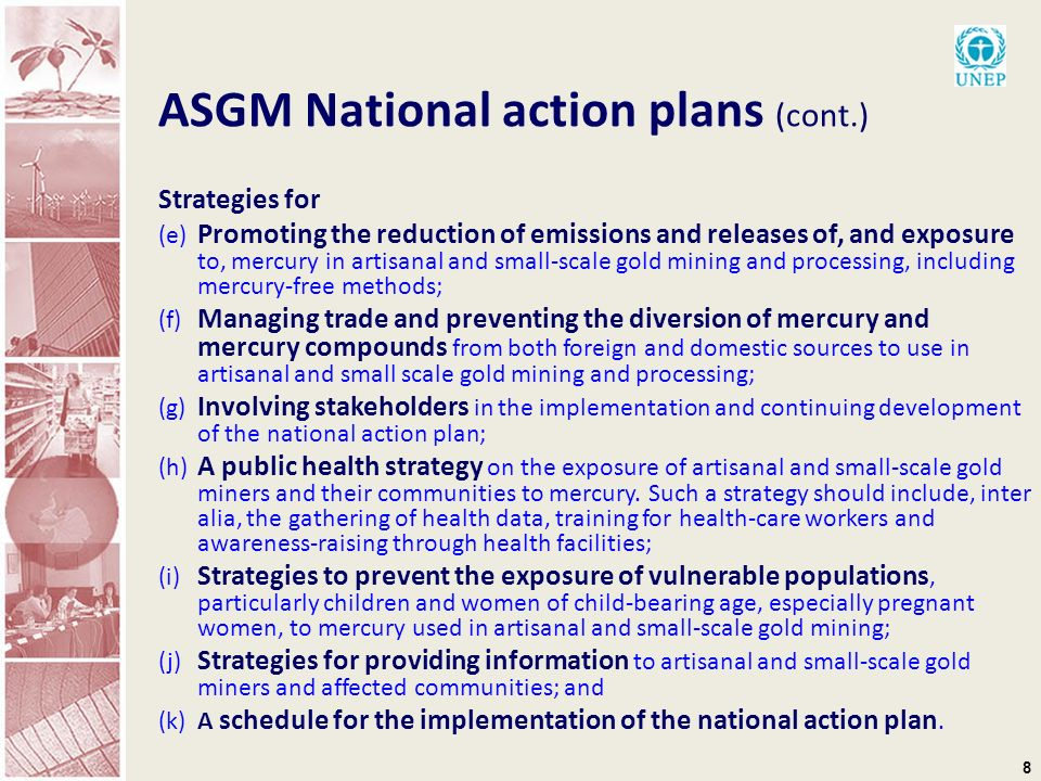 8 ASGM National action plans (cont.) Strategies for (e) Promoting the reduction of emissions and releases of, and exposure to, mercury in artisanal and small-scale gold mining and processing, including mercury-free methods; (f) Managing trade and preventing the diversion of mercury and mercury compounds from both foreign and domestic sources to use in artisanal and small scale gold mining and processing; (g) Involving stakeholders in the implementation and continuing development of the national action plan; (h) A public health strategy on the exposure of artisanal and small-scale gold miners and their communities to mercury.