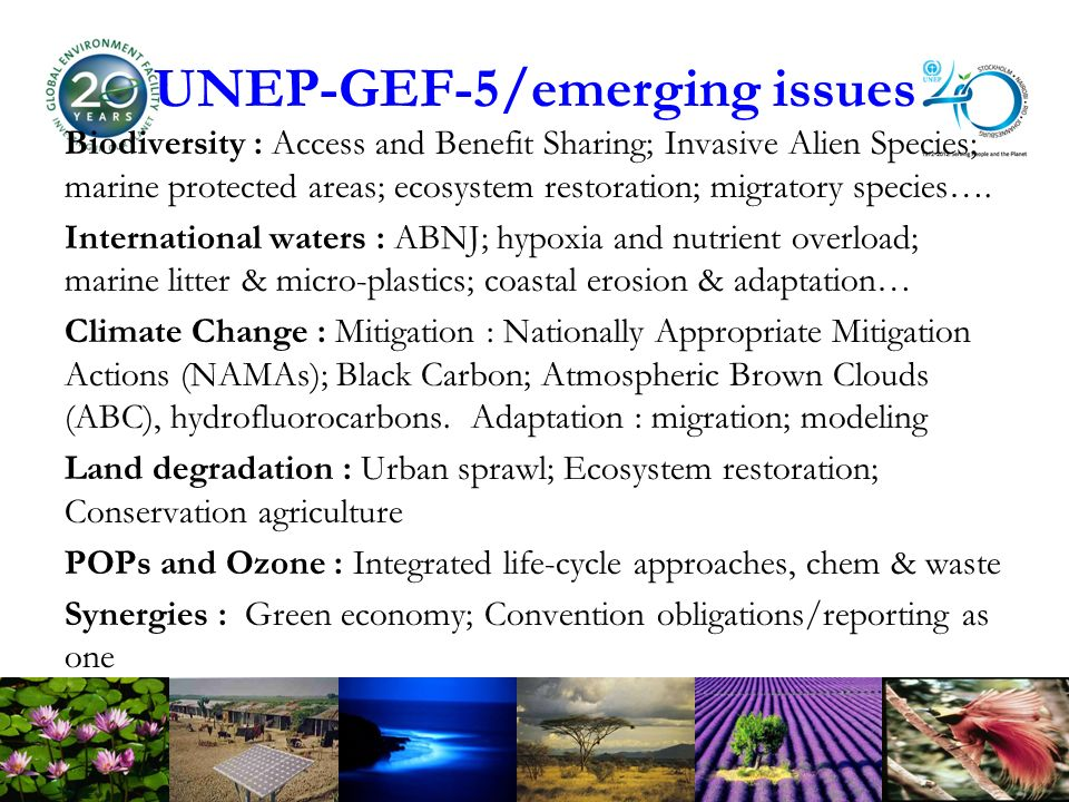 UNEP-GEF-5/emerging issues Biodiversity : Access and Benefit Sharing; Invasive Alien Species; marine protected areas; ecosystem restoration; migratory species….