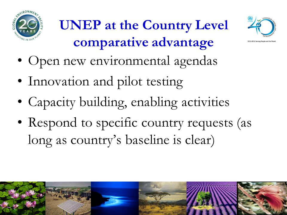 UNEP at the Country Level comparative advantage Open new environmental agendas Innovation and pilot testing Capacity building, enabling activities Respond to specific country requests (as long as countrys baseline is clear)