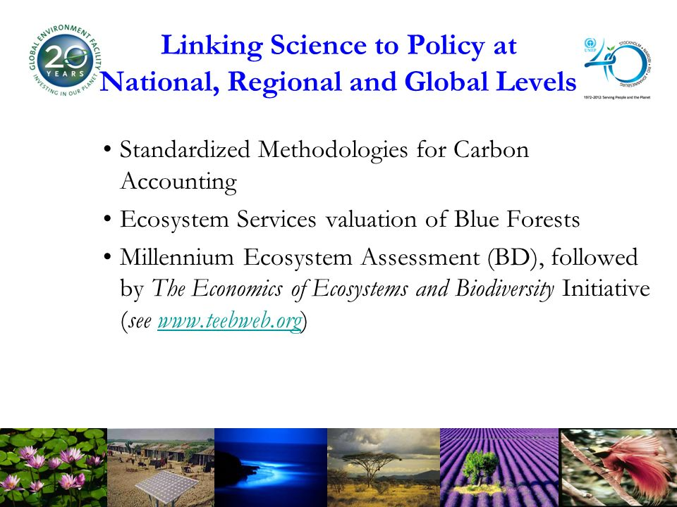 Linking Science to Policy at National, Regional and Global Levels Standardized Methodologies for Carbon Accounting Ecosystem Services valuation of Blue Forests Millennium Ecosystem Assessment (BD), followed by The Economics of Ecosystems and Biodiversity Initiative (see
