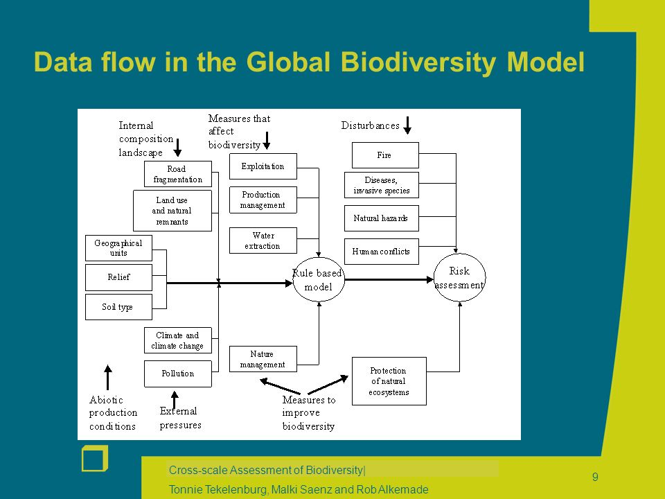 r Cross-scale Assessment of Biodiversity| Tonnie Tekelenburg, Malki Saenz and Rob Alkemade 9 Data flow in the Global Biodiversity Model