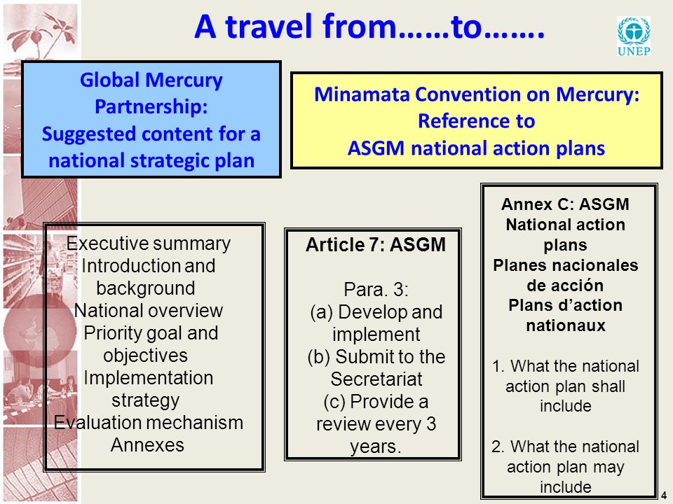 4 Global Mercury Partnership: Suggested content for a national strategic plan Executive summary Introduction and background National overview Priority