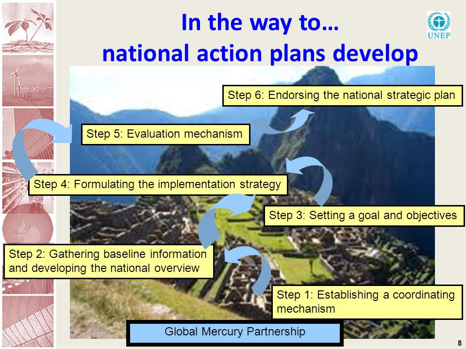 8 In the way to… national action plans develop Step 1: Establishing a coordinating mechanism Step 2: Gathering baseline information and developing the