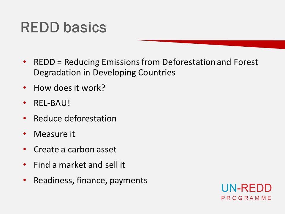 UN-REDD P R O G R A M M E REDD basics REDD = Reducing Emissions from Deforestation and Forest Degradation in Developing Countries How does it work? RE