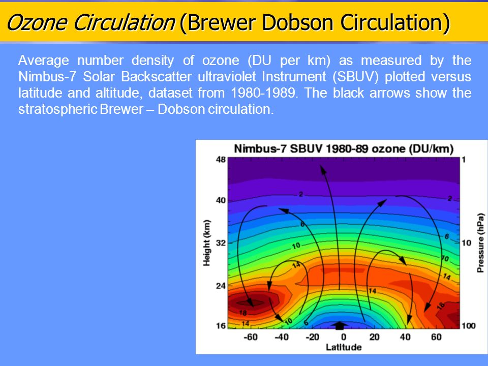 Ozone Circulation (Brewer Dobson Circulation) Average number density of ozone (DU per km) as measured by the Nimbus-7 Solar Backscatter ultraviolet Instrument (SBUV) plotted versus latitude and altitude, dataset from 1980-1989.