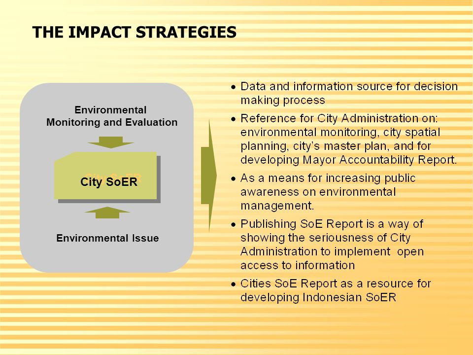 City SoER Environmental Issue Environmental Monitoring and Evaluation THE IMPACT STRATEGIES