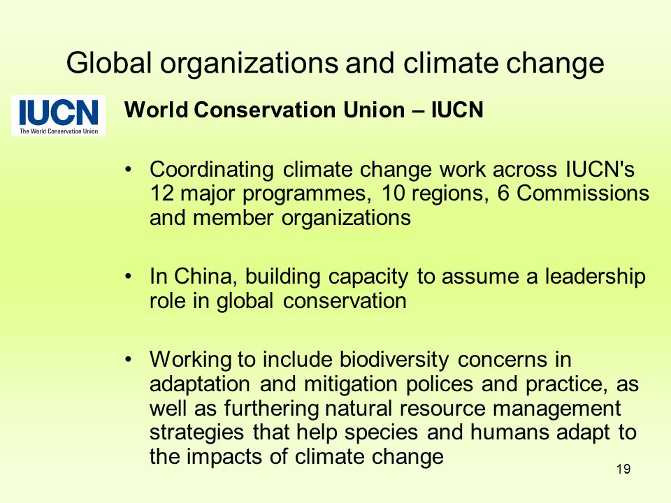 19 Global organizations and climate change World Conservation Union – IUCN Coordinating climate change work across IUCN's 12 major programmes, 10 regi