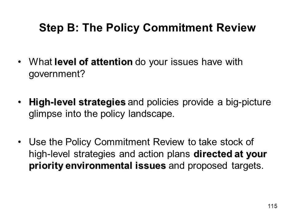115 Step B: The Policy Commitment Review level of attentionWhat level of attention do your issues have with government? High-level strategiesHigh-leve