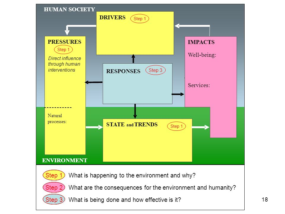 18 HUMAN SOCIETY ENVIRONMENT STATE and TRENDS RESPONSES PRESSURES Natural processes: DRIVERS Step 2 Step 1 Step 3 Step 1What is happening to the envir
