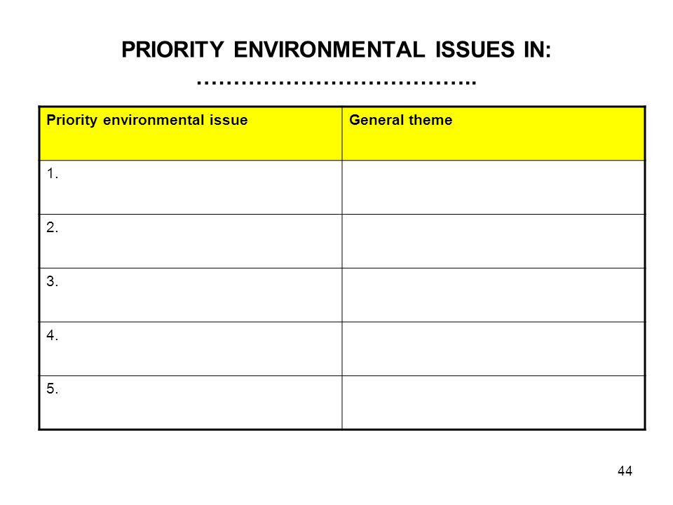 44 PRIORITY ENVIRONMENTAL ISSUES IN: ……………………………….. Priority environmental issueGeneral theme 1. 2. 3. 4. 5.