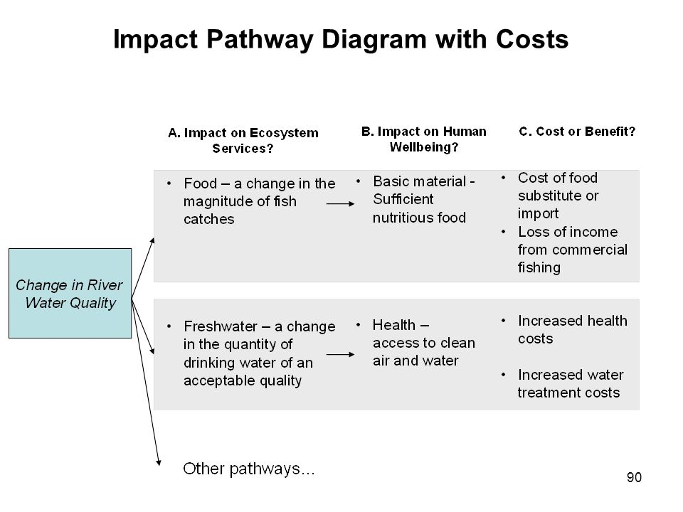 90 Impact Pathway Diagram with Costs