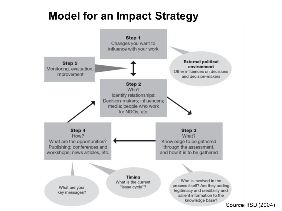 Model for an Impact Strategy Source: IISD (2004)