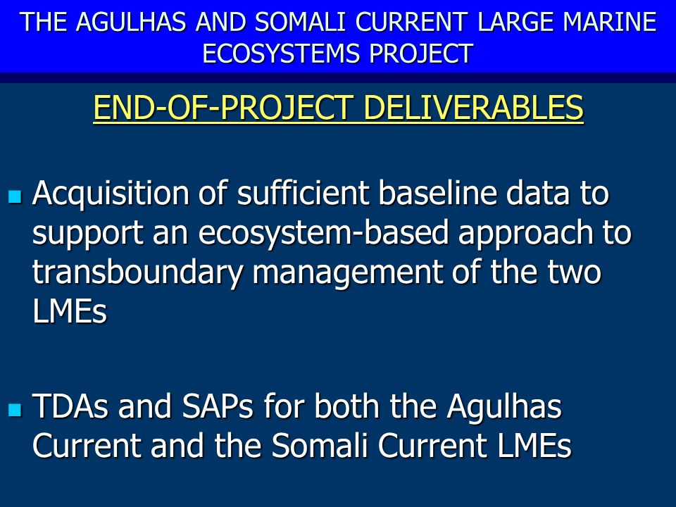 THE AGULHAS AND SOMALI CURRENT LARGE MARINE ECOSYSTEMS PROJECT END-OF-PROJECT DELIVERABLES Acquisition of sufficient baseline data to support an ecosystem-based approach to transboundary management of the two LMEs Acquisition of sufficient baseline data to support an ecosystem-based approach to transboundary management of the two LMEs TDAs and SAPs for both the Agulhas Current and the Somali Current LMEs TDAs and SAPs for both the Agulhas Current and the Somali Current LMEs