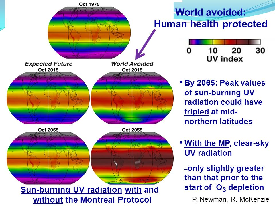P. Newman, R. McKenzie By 2065: Peak values of sun-burning UV radiation could have tripled at mid- northern latitudes With the MP, clear-sky UV radiat