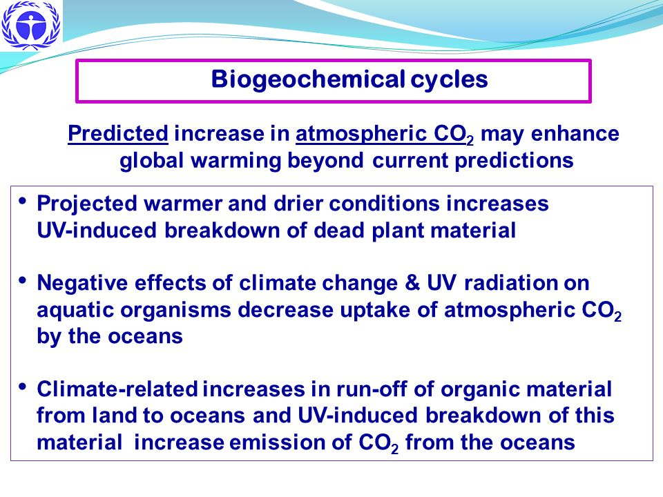 Projected warmer and drier conditions increases UV-induced breakdown of dead plant material Negative effects of climate change & UV radiation on aquat