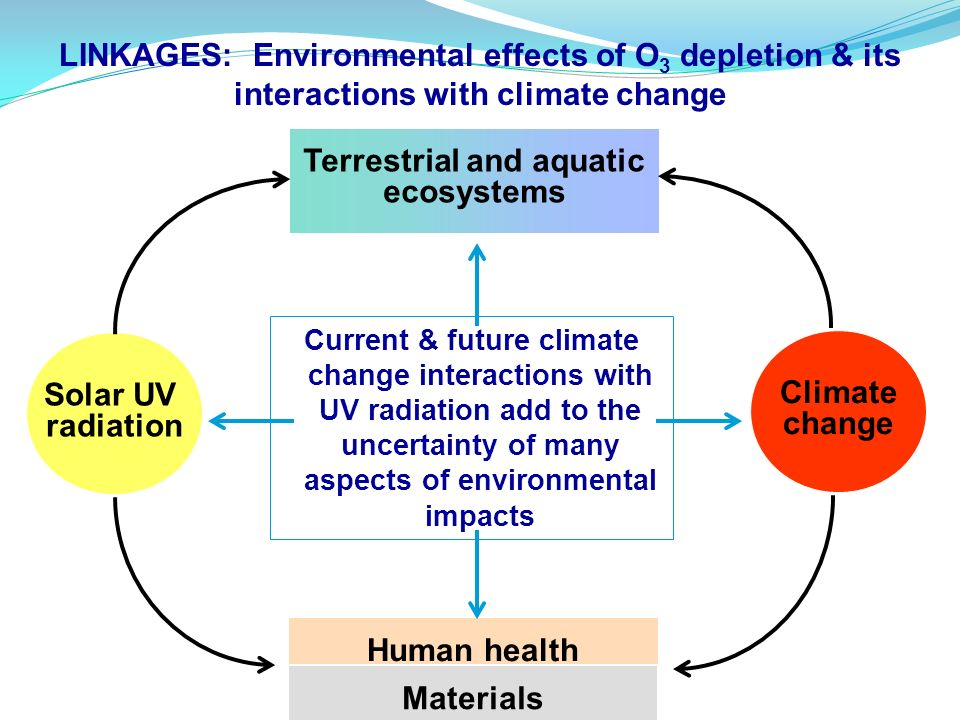 Solar UV radiation Current & future climate change interactions with UV radiation add to the uncertainty of many aspects of environmental impacts Terr