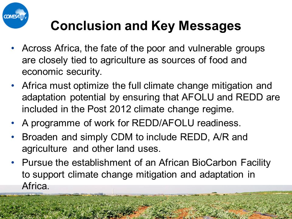 Conclusion and Key Messages Across Africa, the fate of the poor and vulnerable groups are closely tied to agriculture as sources of food and economic security.