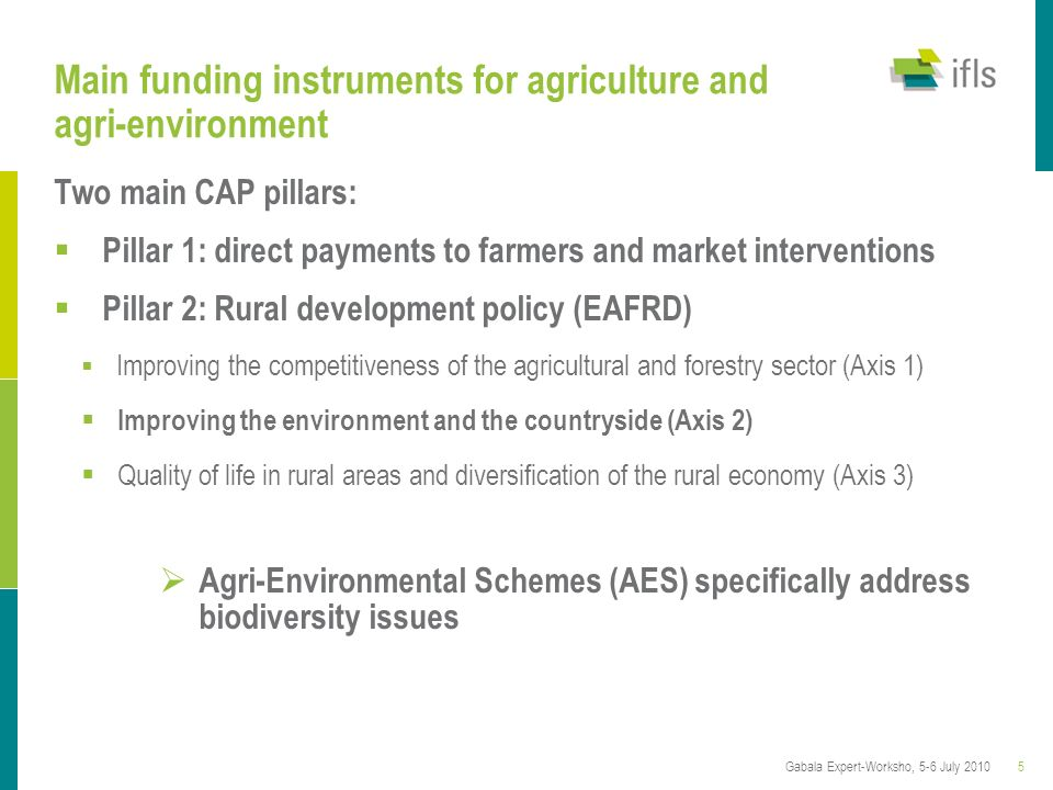 5Gabala Expert-Worksho, 5-6 July 2010 Main funding instruments for agriculture and agri-environment Two main CAP pillars: Pillar 1: direct payments to