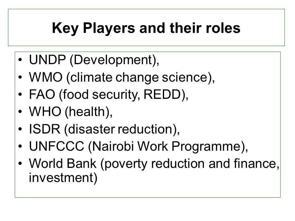 Key Players and their roles UNDP (Development), WMO (climate change science), FAO (food security, REDD), WHO (health), ISDR (disaster reduction), UNFCCC (Nairobi Work Programme), World Bank (poverty reduction and finance, investment)