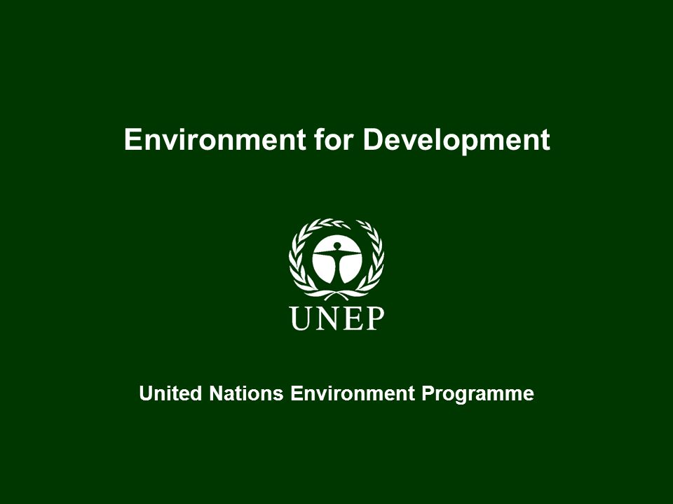 United Nations Environment Programme Plant for the Planet: The Billion Tree Campaign I believe in the symbolic strength of the Plant for the Planet Billion Tree Campaign and I sincerely hope it will meet our expectations, far beyond the welfare linked to replanting trees, to benefit future generations.