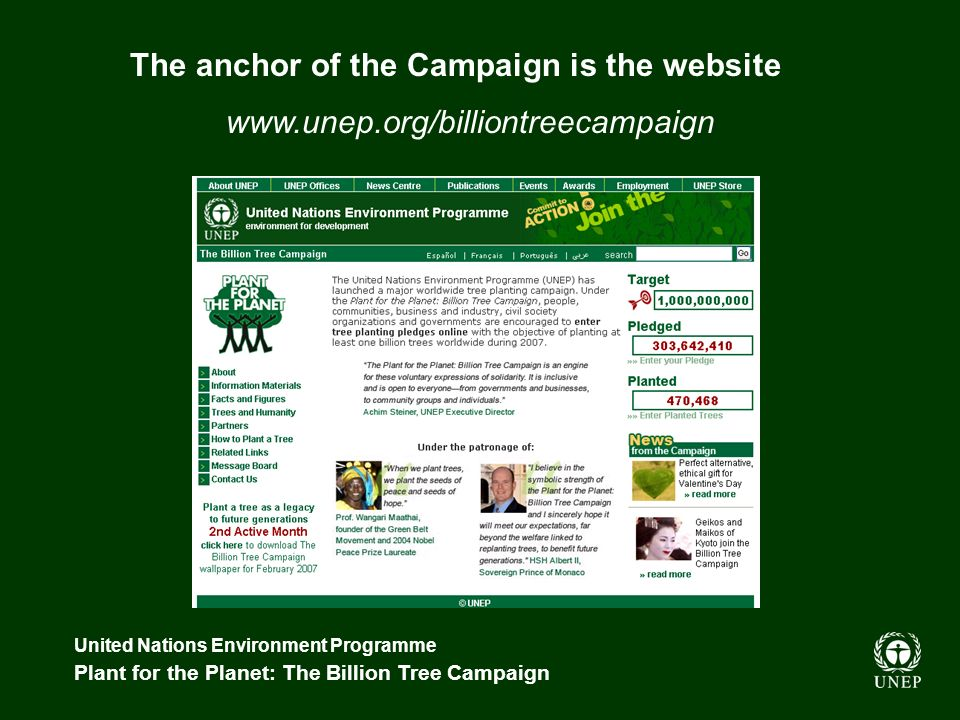 United Nations Environment Programme Plant for the Planet: The Billion Tree Campaign The anchor of the Campaign is the website www.unep.org/billiontreecampaign