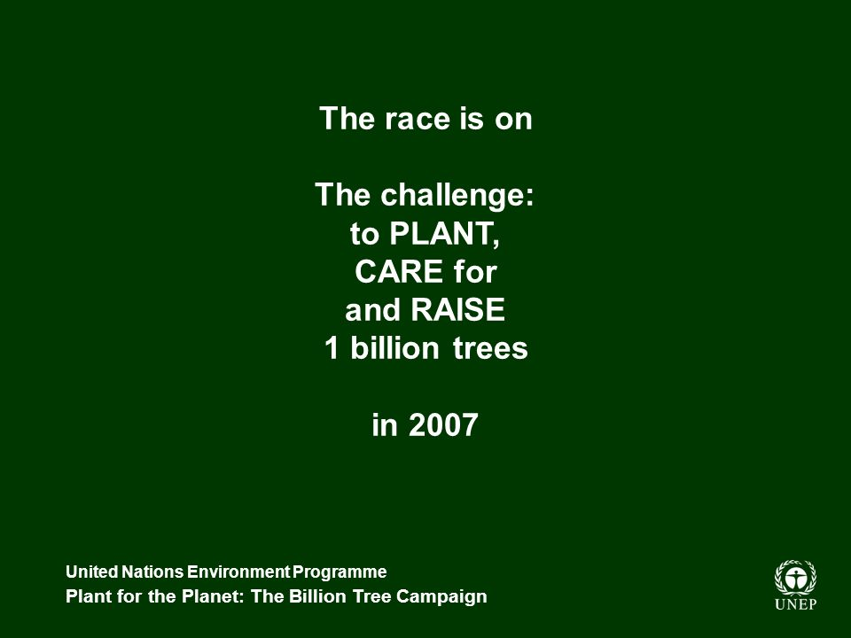 United Nations Environment Programme Plant for the Planet: The Billion Tree Campaign The race is on The challenge: to PLANT, CARE for and RAISE 1 billion trees in 2007