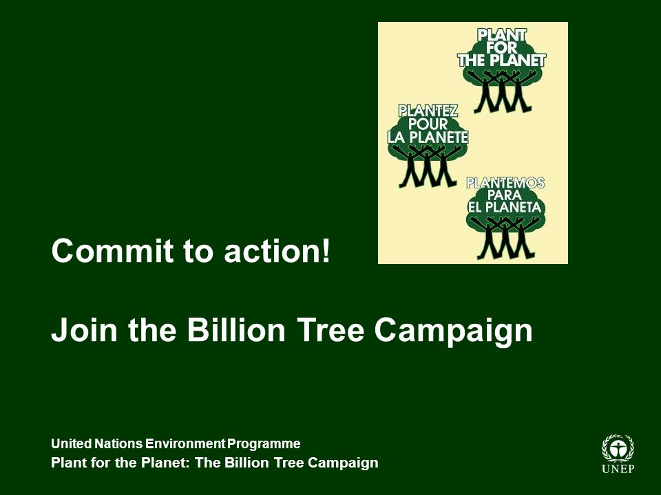 United Nations Environment Programme Plant for the Planet: The Billion Tree Campaign Commit to action.