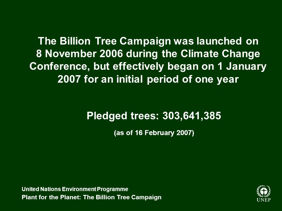 United Nations Environment Programme Plant for the Planet: The Billion Tree Campaign Pledged trees: 303,641,385 (as of 16 February 2007) The Billion T