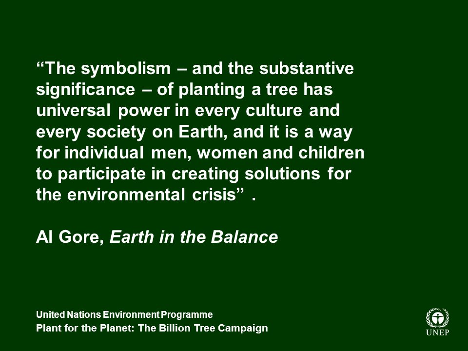 United Nations Environment Programme Plant for the Planet: The Billion Tree Campaign The symbolism – and the substantive significance – of planting a