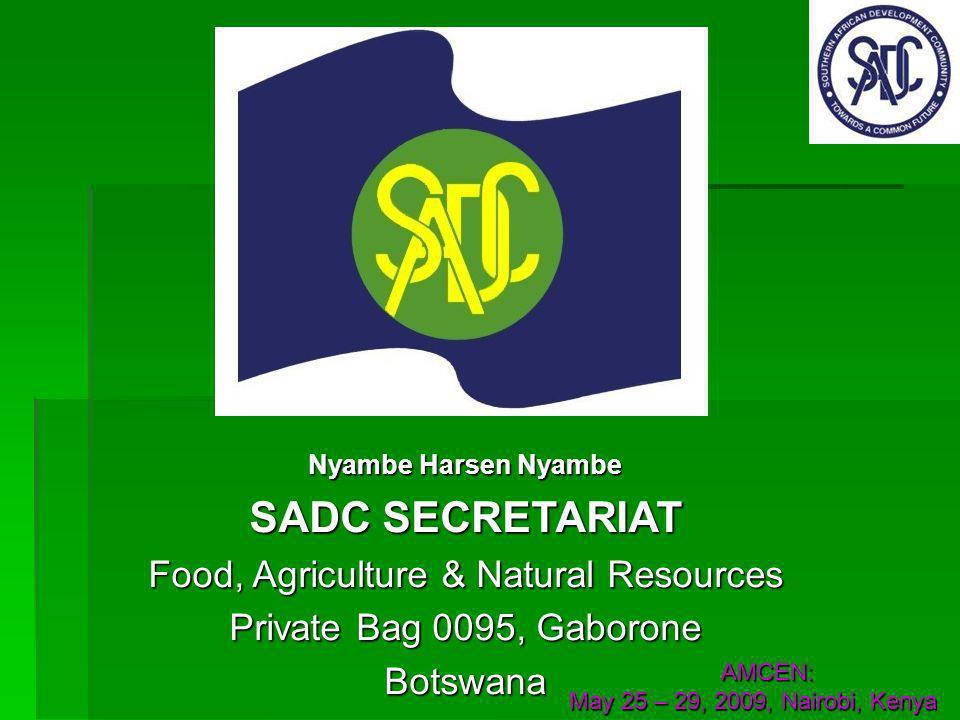 Nyambe Harsen Nyambe SADC SECRETARIAT Food, Agriculture & Natural Resources Private Bag 0095, Gaborone Botswana AMCEN: AMCEN: May 25 – 29, 2009, Nairobi, Kenya