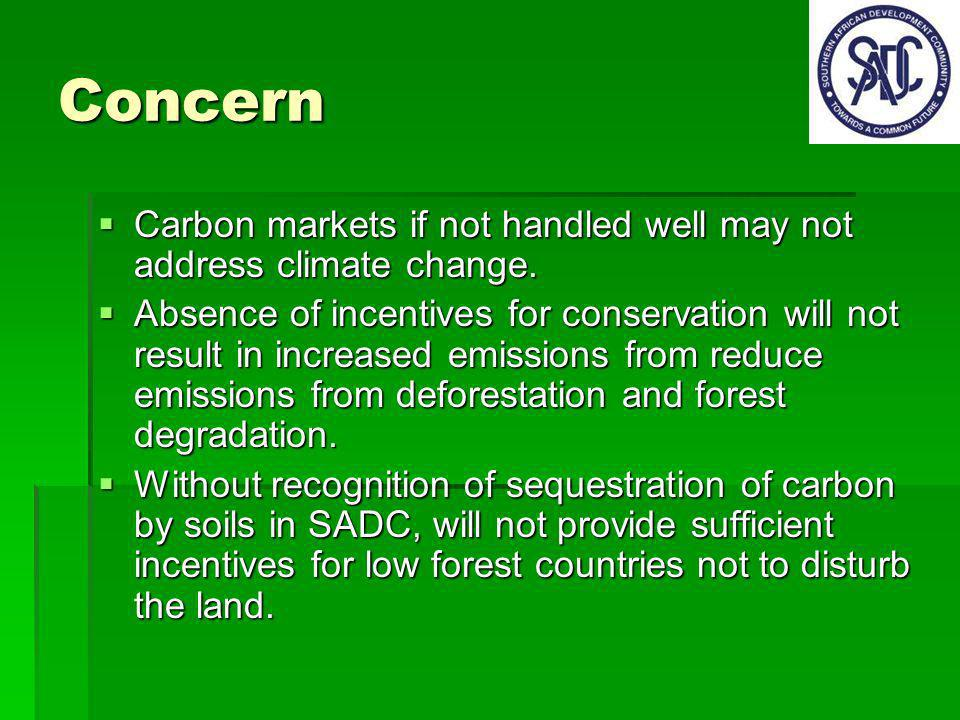 Concern Carbon markets if not handled well may not address climate change.